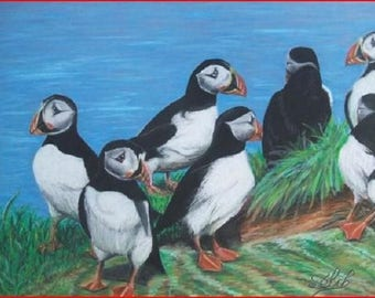 """""""Portrait of a Puffin, pastel oil on paper"""