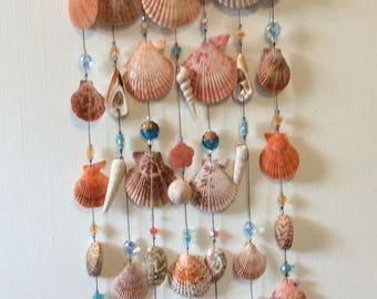 Exotic seashell wind chimes