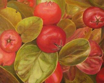 Budapest Berries