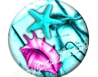 1 cabochon 25mm domed glass cabochon holidays, seashells, starfish, seahorse image shown