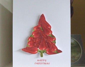 Christmas Card Chilli Seed