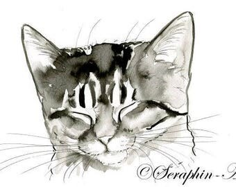 Sleeping Kitten Original Watercolor Painting