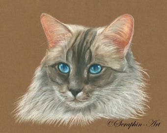 Ragdoll Cat Original Pastel Painting