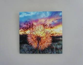 Metal print Sunset