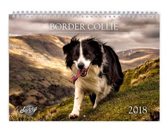 Border Collie 2018 Wall Calendar