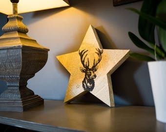 Star frame deer