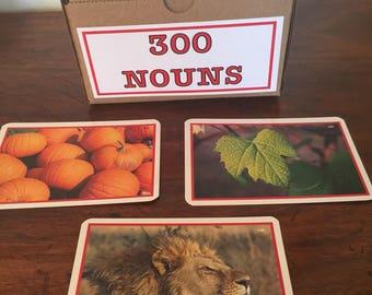 First 300 Nouns