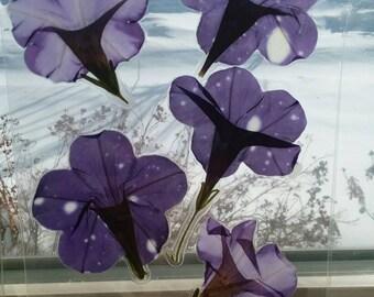 Bookmark/window hanging pressed flowers