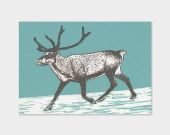 Reindeer – screen printing, drawing