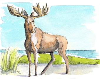Moose, Watercolour and Ink PRINT
