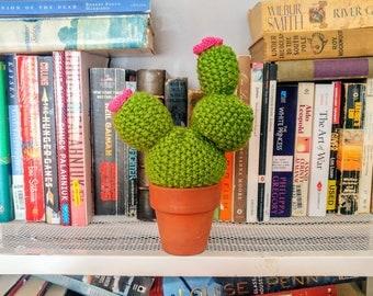 Blooming Knit Cactus in Terra Cotta Pot