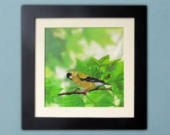 Spring Goldfinch - Framed Thread Painting - Modern Quilted Wall Art in Spring Green Tones
