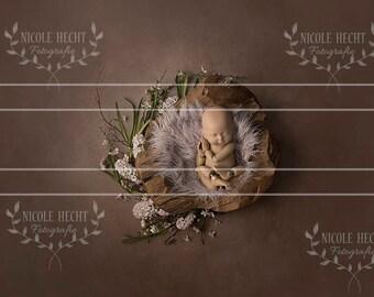 Digital background Neugeborenenfotografie