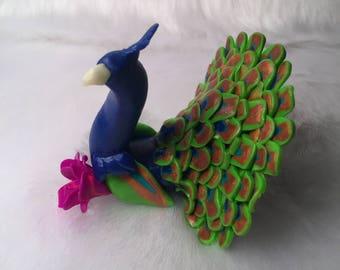 Sir fancy the peacock