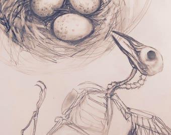 Commission | Pencil & Pastel