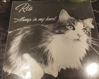 Granite Pet Memorials to Honor the Memory of a Little Friend