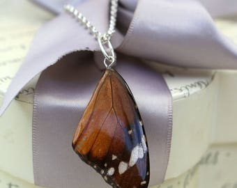 Butterfly Wing Pendant - Preserved in Resin