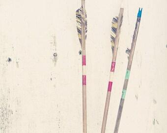 Plucked; fine art photography, arrow art, nursery art, cabin art, cottage art, wall art,  by F2images