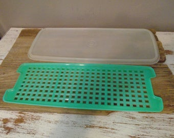 Replacement tray and lid for green Tupperware celery / vegetable keeper / crisper, Tupperware replacement parts,