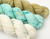 Sea Light Kit Signature DK
