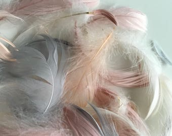 FEATHER CONFETTI/ nude, white and grey / 284