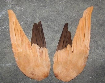 SALE Vintage Pair Millinery French  Feather Wing Hat Trim NOS  Pair Of Wings  #3432