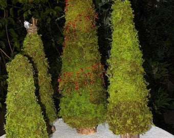 Save25% Custom Order 6 Christmas Trees in preserved soft fern moss