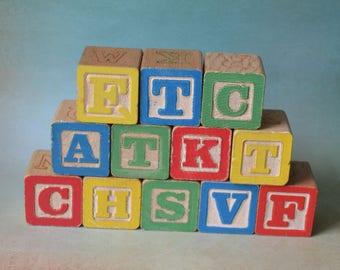 Vintage Wooden Alphabet Letter Blocks Lot of 12