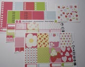 Strawberry Weekly Sticker Kit  / Great for your vertical Erin Condren Life Planner