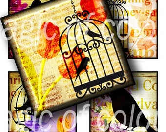 Bird and Birdcage - 63  1x1 Inch Square  JPG images - Digital  Collage Sheet