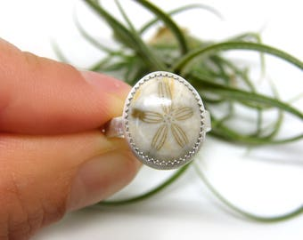 Little Fossilized Sand Dollar Silver Ring No. 1