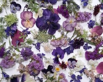 Dried Flower Confetti, Wedding Decorations, Bulk,  Flower Petals, Flower Girl, Tossing Flowers, Wildflower  Wedding, 60 US cups Confetti