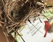 Real Bird Nest . Birds Nest . Nature Nest . Authentic Twig Bird Nest . Home Decor Nest . Nest with Eggs . Floral Accent . Wedding Decor