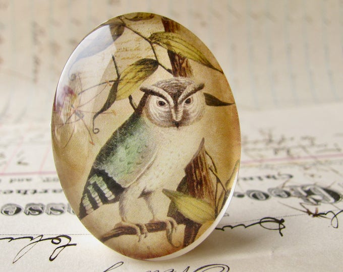 Eagle Owl, Horned Owl, 40x30mm glass oval cabochon, brown blue, wisdom bird, handmade in this shop, Bird Illustration collection
