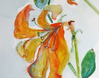 Day Lily 12x9 floral watercolor panting Art by Delilah