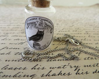 Apothecary Jar Of Midnight Stars With Owl Charm Necklace
