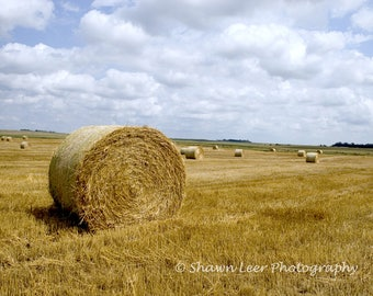 Hay Straw Bales in field South Dakota Landscape Photograph