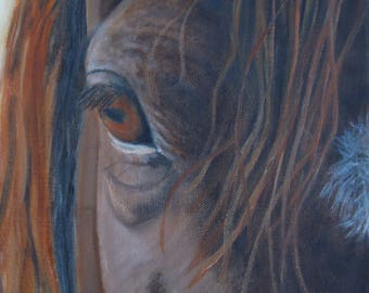 "Horses Eye Painting Horse Head Art Equine Oil Painting Original Oil on 8"" X 8"" Canvas Horse Lover Equine Art Eye Painting Horse Painting"