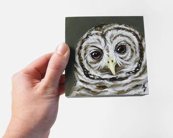 Spotted Owl painting - woodland owl art - realistic wildlife painting - traditional art - endangered species - nature gift - miniature