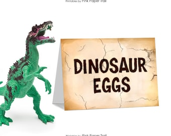 Dinosaur Dig Excavation Paleo Party Table Tent Cards Place Cards Buffet Sign I Will Customize for You Print Your Own