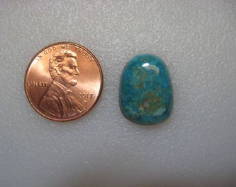 Fox Turquoise Cabochon