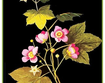 GREAT SALE Mary Delany's American Raspberry Flowers * from Paper Mosaics* Counted Cross Stitch Chart / Pattern