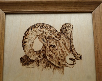 Wood burning , Big Horn Ram, mountain goat, pyrography, wood wall art, animal art