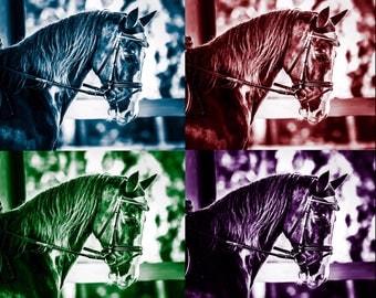 Horse Pop Art Print Headshot Portrait Fine Art Photography