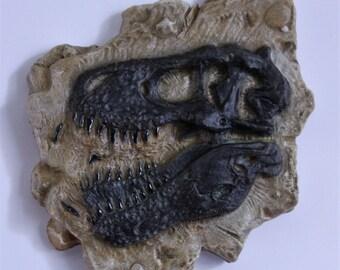 Tyrannosaurus Rex Skull Fossil Magnet