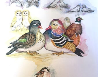 Family Tree Art Print of Bird Couples with a Bird Baby; parents are Mandarin Duck, symbolizing love and loyalty. Art print of water colour.