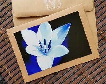 Photo Card Blank Flower Greeting