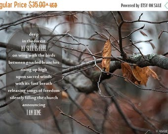 ON SALE Forest Inspirational Poem, Fine Art Photography, Woodland Poem, Unique Nature Print, Typography, Wilderness, Nature Poetry, Wall Art