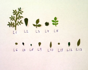 L5 miniature paper leaves for dollsh Flowers and plants