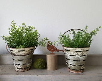 Galvanized Olive Bucket Buckets Distressed White Paint with Faux Plant Farmhouse
